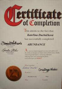 Certifikát Kineziologie