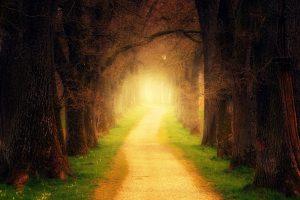 světelní inspirátoři